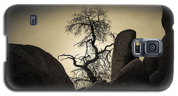 Desert Bonsai Galaxy S5 Case