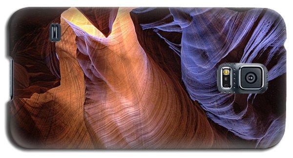 Desert Camel Galaxy S5 Case