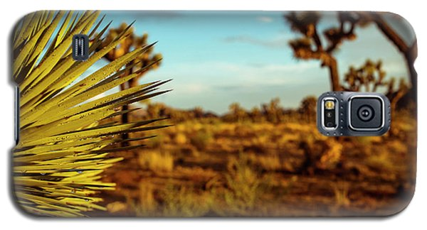 Desert Fan Galaxy S5 Case