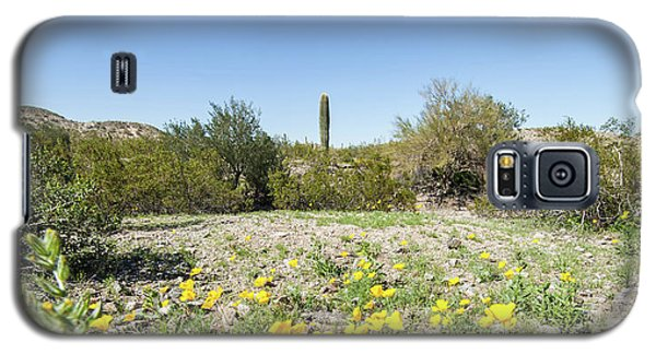 Desert Flowers And Cactus Galaxy S5 Case by Ed Cilley