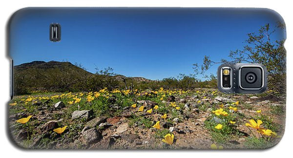 Galaxy S5 Case featuring the photograph Desert Flowers In Spring by Ed Cilley