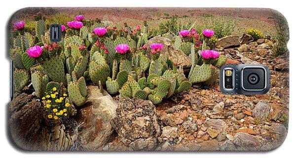 Desert Flowers Galaxy S5 Case