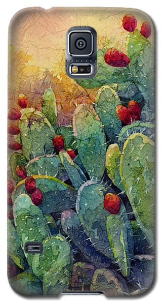 Desert Gems 2 Galaxy S5 Case