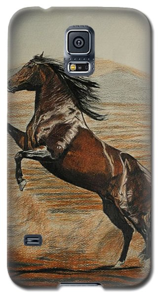 Galaxy S5 Case featuring the drawing Desert Horse by Melita Safran