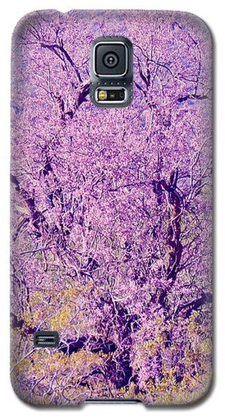 Desert Ironwood  Beauty 2 Galaxy S5 Case