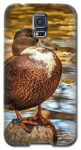 Desert Island Galaxy S5 Case