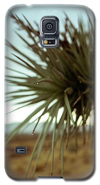 Desert Leaves Galaxy S5 Case