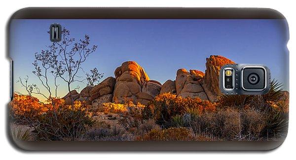 Desert Light Galaxy S5 Case
