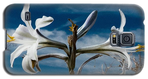 Desert Lilly Close Up Galaxy S5 Case by Jeremy McKay