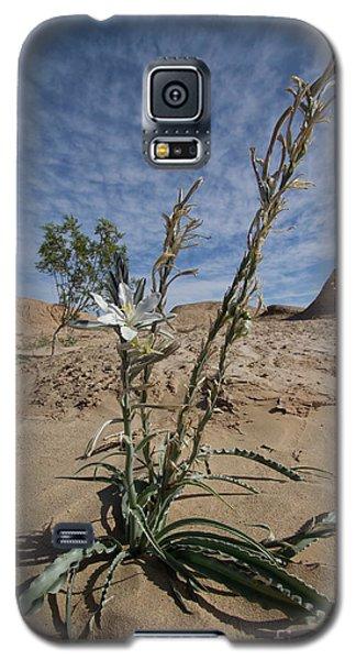 Desert Lilly Galaxy S5 Case