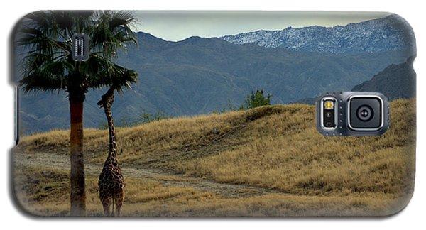 Desert Palm Giraffe 001 Galaxy S5 Case