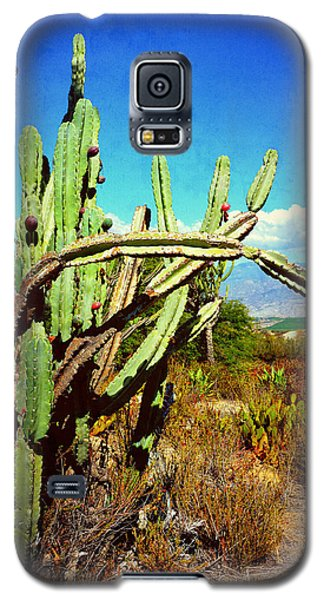 Galaxy S5 Case featuring the photograph Desert Plants - Westward Ho by Glenn McCarthy