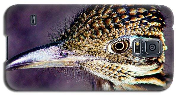 Desert Predator Galaxy S5 Case