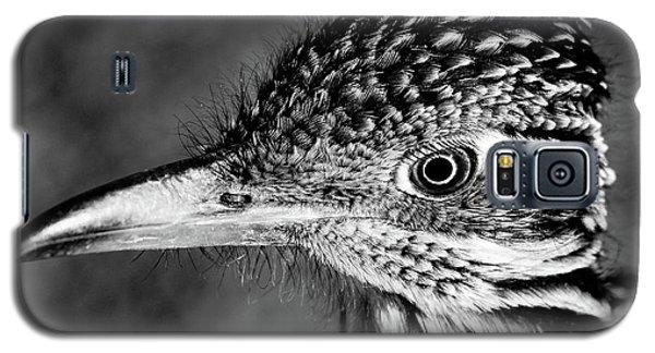 Desert Predator, Black And White Galaxy S5 Case