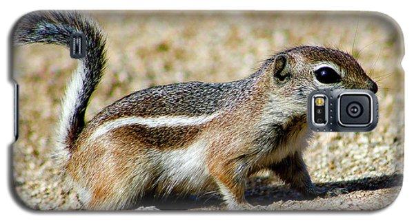 Scavenger Galaxy S5 Case
