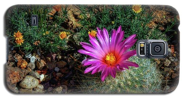 Desert Splash Galaxy S5 Case