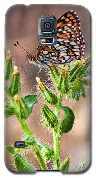 Desert Spring Life Galaxy S5 Case