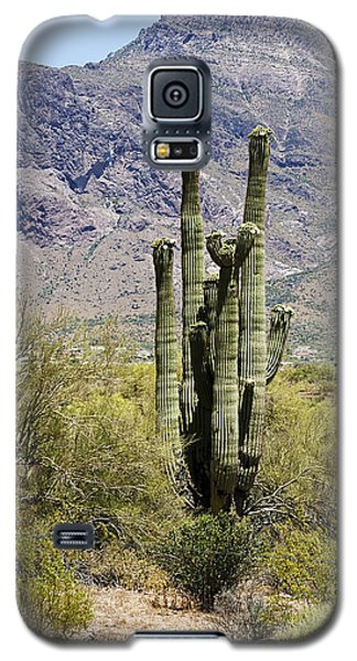 Galaxy S5 Case featuring the photograph Desert Strength by Phyllis Denton