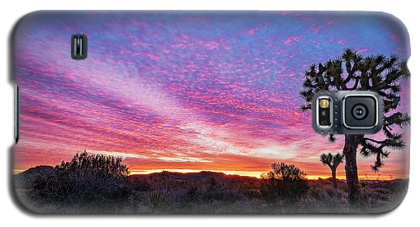 Desert Sunrise At Joshua Tree Galaxy S5 Case