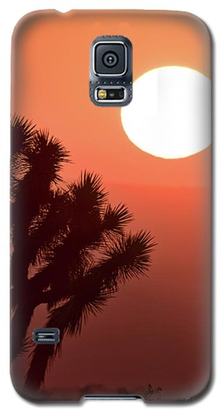 Desert Sunrise Galaxy S5 Case