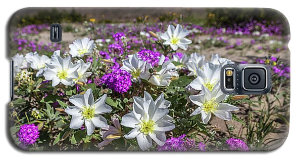 Galaxy S5 Case featuring the photograph Desert Super Bloom 2017 by Peter Tellone