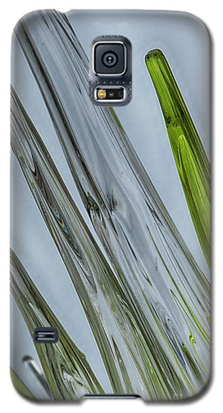 Glass Galaxy S5 Case by Anne Rodkin