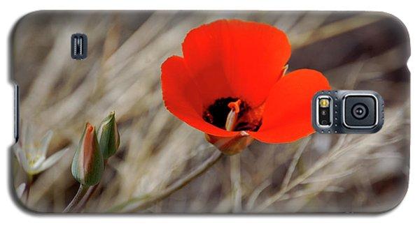 Desert Wildflower Galaxy S5 Case
