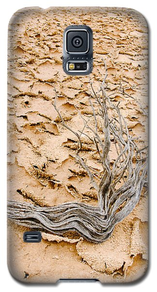 Desert Wood Galaxy S5 Case