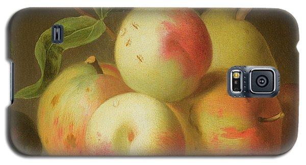 Detail Of Apples On A Shelf Galaxy S5 Case by Jakob Bogdany