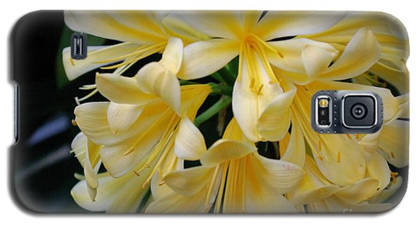 Details In Yellow And White Galaxy S5 Case by John S