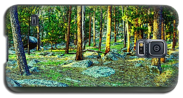 Devils Tower Morning Galaxy S5 Case by Dave Luebbert