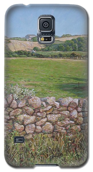 Galaxy S5 Case featuring the painting Devon Field And Drystone Wall by Martin Davey