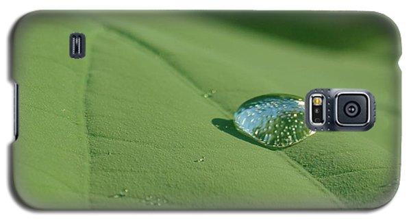 Dew Drop Galaxy S5 Case