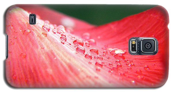 Dew Drops On A Wave Of Red Galaxy S5 Case