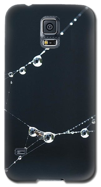 Dew On Cobweb 001 Galaxy S5 Case