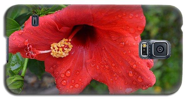 Dew On Flower Galaxy S5 Case