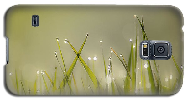 Dew On Grass Galaxy S5 Case