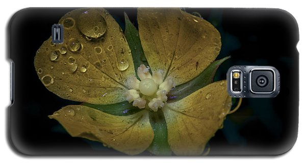 Galaxy S5 Case featuring the photograph Dew To Drought 546 by Karen Musick