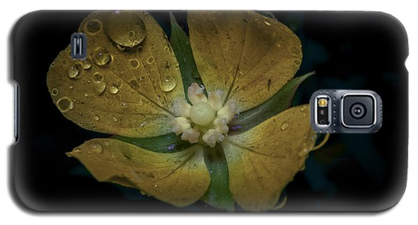 Dew To Drought 546 Galaxy S5 Case