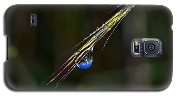 Dewdrop Reflection - Sunrise 001 Galaxy S5 Case by George Bostian