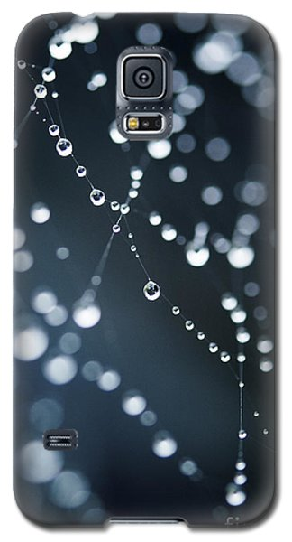 Dewdrops On Cobweb 003 Galaxy S5 Case