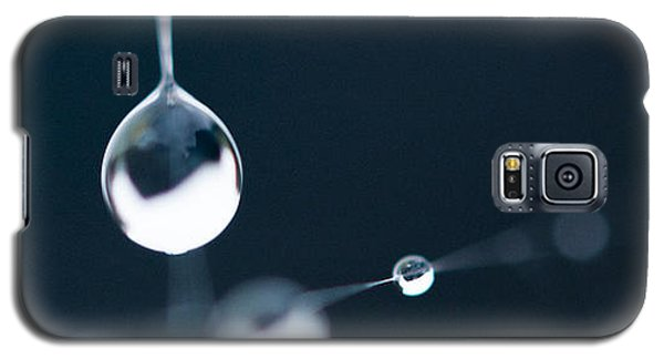 Dewdrops On Cobweb 005 Galaxy S5 Case