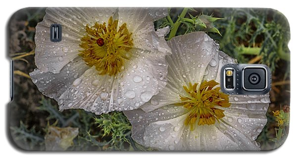 Galaxy S5 Case featuring the photograph Dewey Blooms by Wendell Thompson