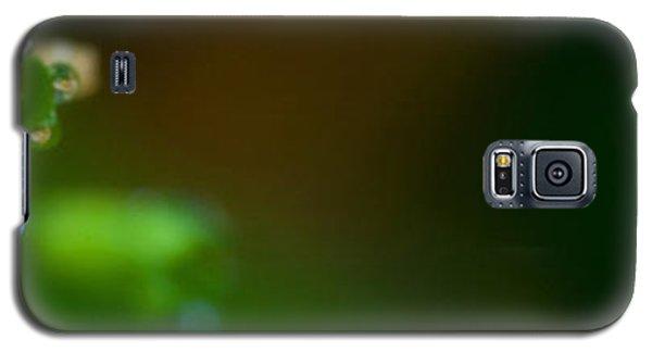 Dewy Blossom  Galaxy S5 Case