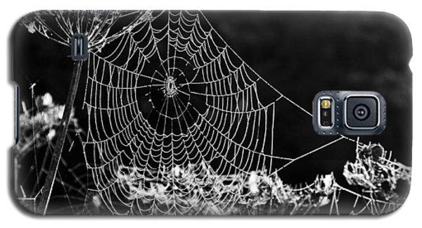 Dewy Spider's Web Galaxy S5 Case