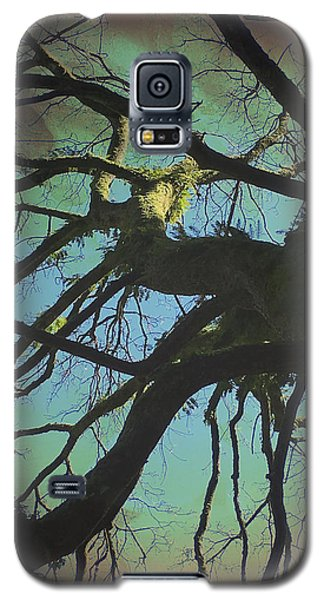 Galaxy S5 Case featuring the photograph Dialogue  by Connie Handscomb