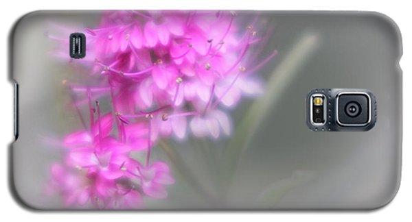 Diana Galaxy S5 Case