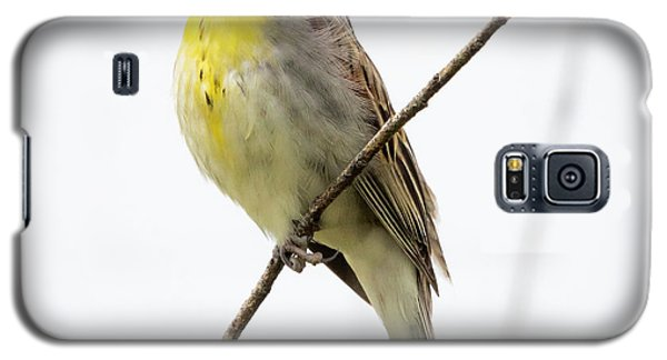 Galaxy S5 Case featuring the photograph Dickcissel  by Ricky L Jones