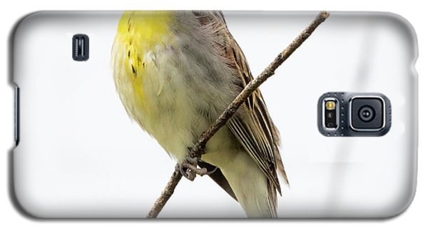 Dickcissel  Galaxy S5 Case
