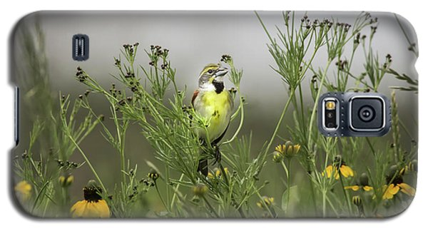 Galaxy S5 Case featuring the photograph Dickcissel With Mexican Hat by Robert Frederick